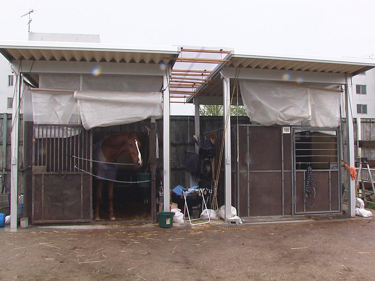 火災で焼失した岐阜大学馬術部のきゅう舎の再建に役立ててもらおうと、JAぎふは13...