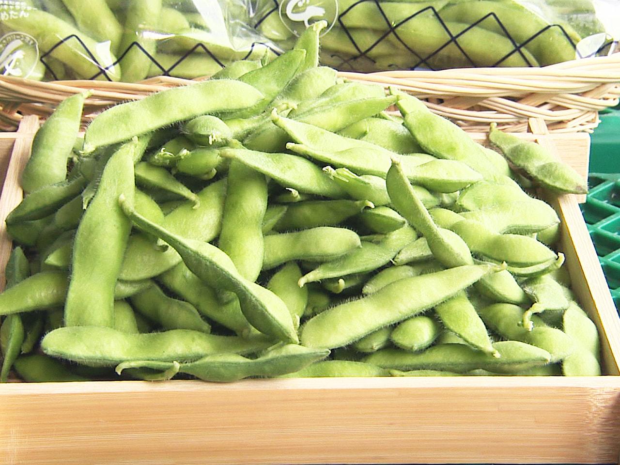 岐阜市特産の「岐阜えだまめ」の出荷が16日、JAぎふ枝豆選果場で始まりました。 ...