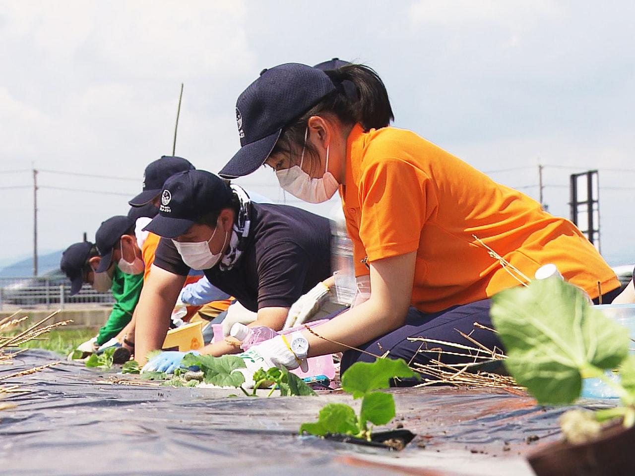 農業分野で働くことで障害のある人の自立を支援するJAぎふの子会社の社員が、農業高...