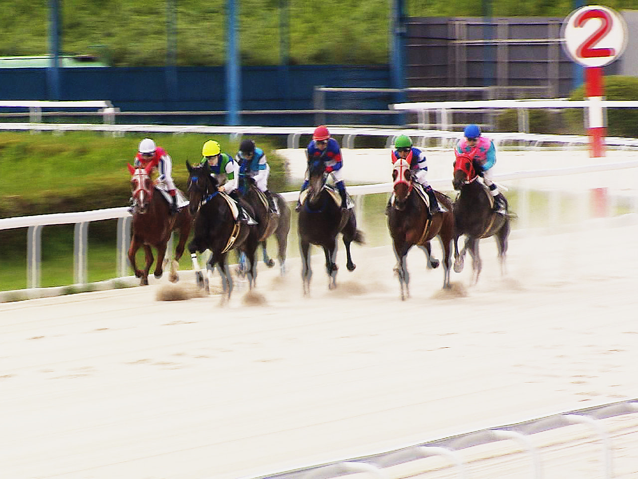 騎手らによる馬券の不正購入など不祥事が相次ぎ、1月からレースを中止している笠松競...
