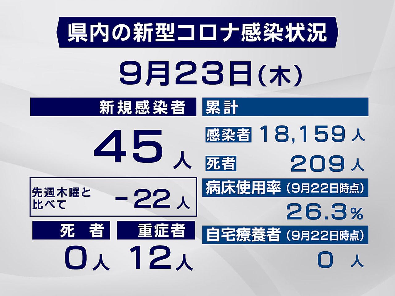 岐阜県と岐阜市は23日、新型コロナウイルスの感染が新たに45人確認されたと発表し...