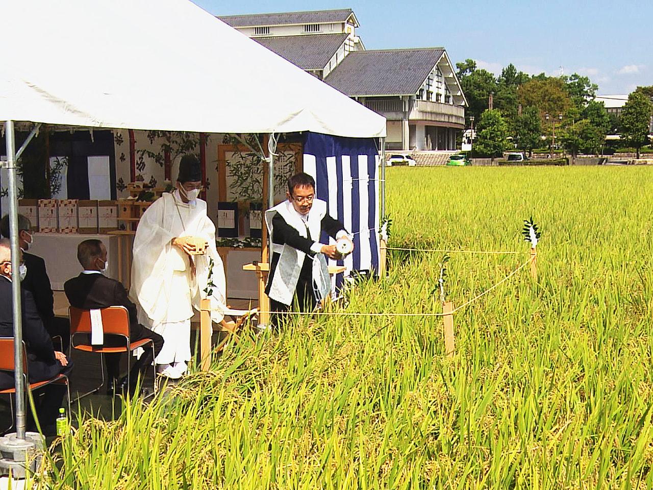 11月に皇居で行われる「新嘗祭(にいなめさい)」に献上する米の収穫を前に「抜穂祭...